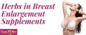 breast enhancement herbal supplements